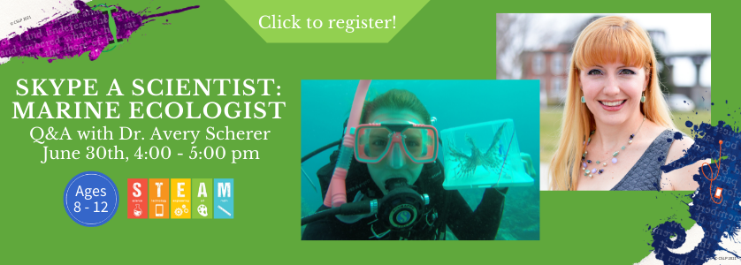 """Banner for """"Skype a Scientist: Marine Ecologist."""" Sub-heading: """"Q&A with Dr. Avery Scherer."""" June 30th, 4:00 - 5:00 pm, ages 8 to 12. Click to register."""